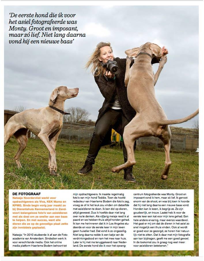 Interview in dier-magazine stoeien met twee weimaraners